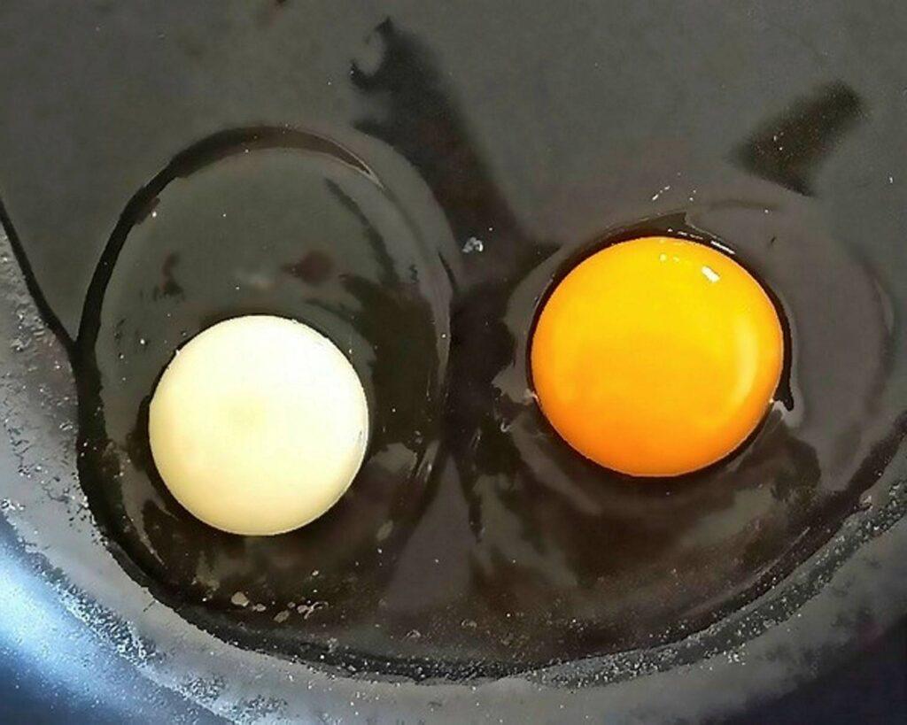 Egg fra hvitt til gult